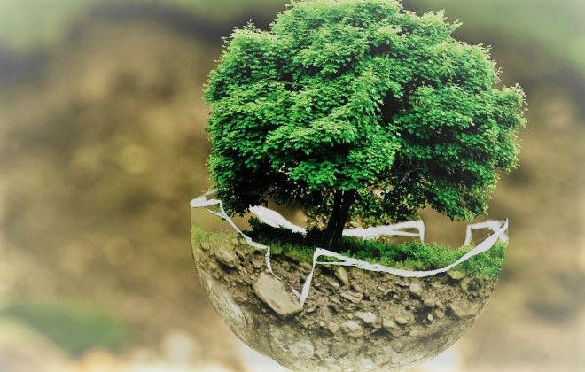 Electricité et plomberie : quand économie rime avec écologie !