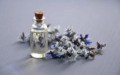 Mes conseils pour trouver l'huile essentielle qui soulagera vos piqûres