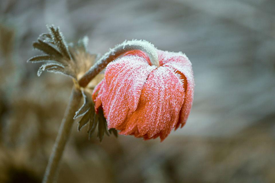 Affrontez l'hiver grâce aux massages