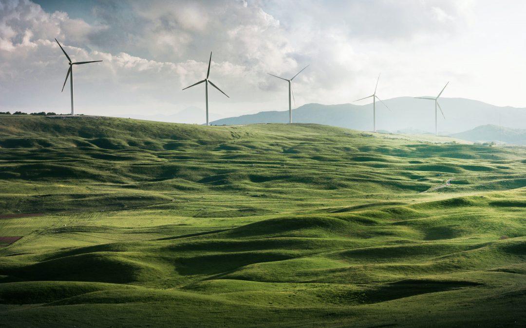 Tout ce que vous devez savoir sur les énergies vertes